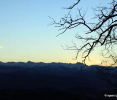 Campo invernale 2014 – Arbi